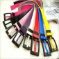 Universal Candy Color Relaxed Plastic Belts